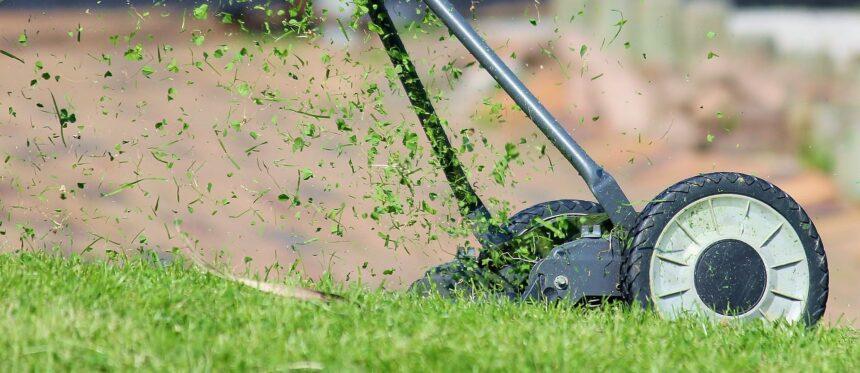 koszenie trawnika - kosiarka elektryczna